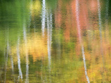 Michigan  Upper Peninsul Reflection of Blurred Autumn Woodland