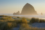 Evening Sunlight over Haystack Rock and the Cannon Beach  Oregon  USA