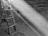 Ancient Kiva with Ladder  Cedar Mesa  Utah  USA