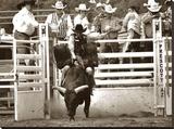 That Ain't No Bull