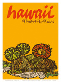 Hawaii - United Air Lines - Native Hawaiian Grass Huts