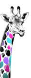 Multicolored Giraffe I