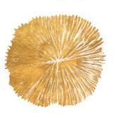 Gold Sand Dollar I (gold foil)