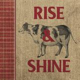 Rise & Shine Farm Fresh II