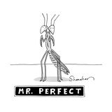 "A two headed mantis is standing and under him there is a box reading ""Mr  - New Yorker Cartoon"