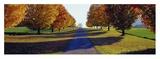 Autumn Road  Storm King Mountain  New York