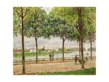 Les Promenade des Marronniers  St Cloud  1878