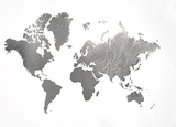 Large Silver Foil World Map