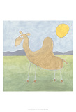 Quinn's Camel