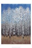 Cobalt Birches II