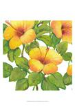 Watercolor Hibiscus III