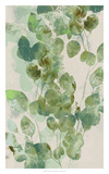 Watercolor Eucalyptus I