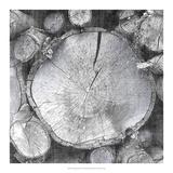 Logging Light VI