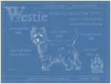 Blueprint Westie