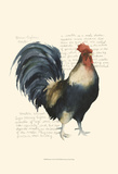 Rooster's Crow I