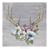 Antlers & Flowers II Reproduction d'art par Grace Popp