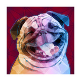 Laughing Dog Reproduction d'art par Enrico Varrasso