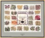 Navajo Dye Chart