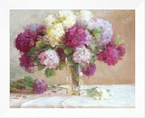Elizabeth's Hydrangeas