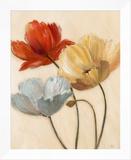 Poppy Palette II
