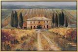 Toscan Vigna