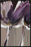 Aubergine Splendor II