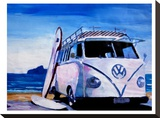 The VW Volkswagen Bully Series - The White Bus