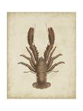 Crustaceans III