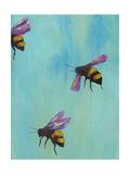 Pollinators III