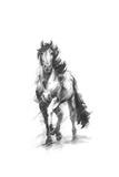 Dynamic Equestrian I