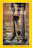 Cover of the June  1982 National Geographic Magazine