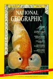Cover of the April  1973 National Geographic Magazine