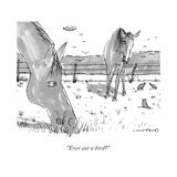 """""""Ever eat a bird"""" - New Yorker Cartoon"""