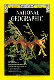 Cover of the June 1978 National Geographic Magazine