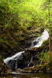 Macintosh Brook Waterfalls in Cape Breton Highlands National Park