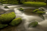 The Roaring Fork River Along the Nature Trail in Great Smoky Mountains National Park