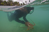 Miskito Indian Dives for Lobsters in the Coral Reefs Off the Gracias a Dios Municipality  Honduras