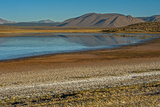 Glass Mountains of the Eastern Sierra Nevada Reflect in Big Alkali Lake  Long Valley  California