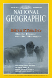 Cover of the November  1994 National Geographic Magazine