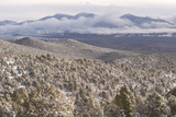 Newly Fallen Snow Along Wheeler Peak Scenic Drive in Great Basin National Park