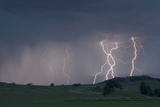 A Lightning Storm Wreaks Havoc on Pastureland