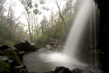 Grotto Falls on the Trillium Gap Trail Near the Roaring Fork Motor Nature Trail