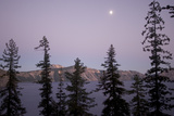 Treetops and the Rim of Crater Lake in Crater Lake National Park