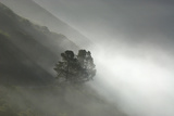 Fog Enshrouds the Coastal Cliffs of Big Sur