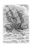 Colossal Octopus Attacking Ship  1801