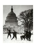 Senate Page Snowball Fight  c1909-1932
