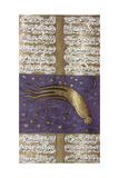 Comet of 1577  Turkish Manuscript