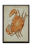 Cancer Constellation  Zodiac Sign  1825