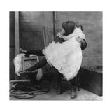 """Affected Modesty""  1901"