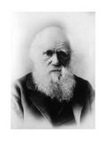 Charles Robert Darwin  English Naturalist